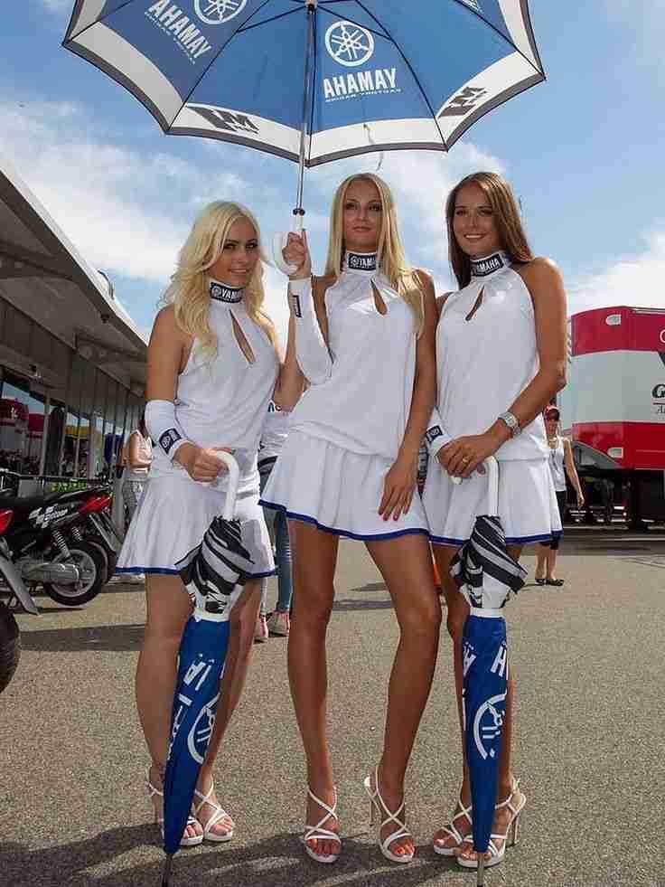 Картинки по запросу paddock girls